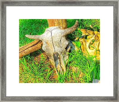 Remains Of The Day Framed Print by Jame Hayes
