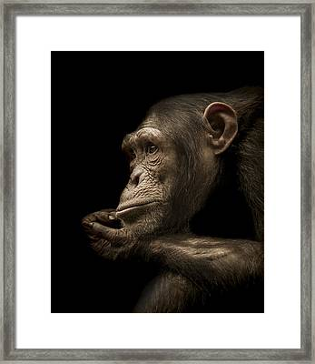 Reminisce Framed Print by Paul Neville