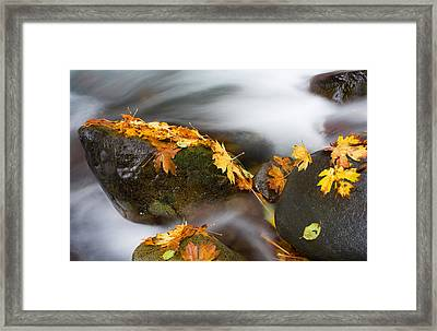 Respite Framed Print by Mike  Dawson