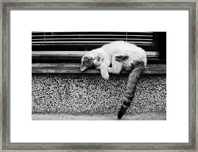 Rest Framed Print by Ivan Vukelic