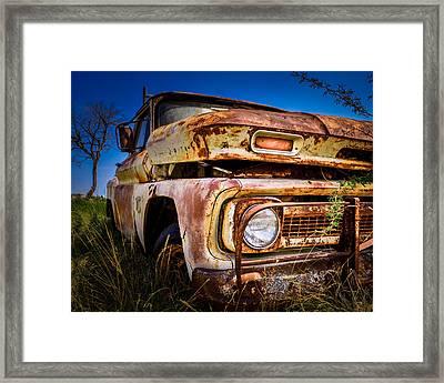 Resting C-10 Chevrolet Framed Print by Tim Singley