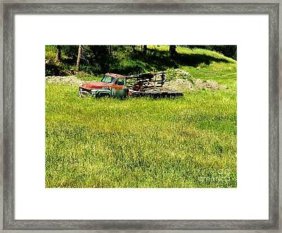 Return To Nature Framed Print by Theresa Willingham