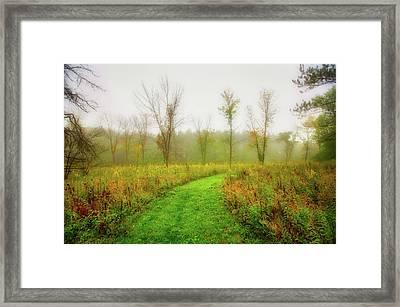 Retzer Nature Center Trail In Utumn Framed Print by Jennifer Rondinelli Reilly