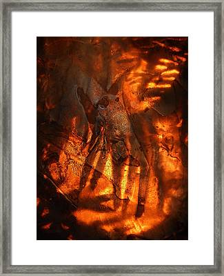 Revelation Framed Print by Sami Tiainen