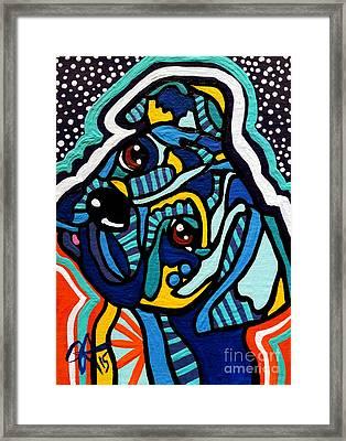 Rex Framed Print by Jackie Carpenter