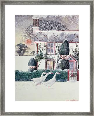 Rg Janek's First Christmas Framed Print by Lisa Graa Jensen