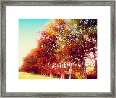 Rhapsody In Fall Framed Print by Wendy J St Christopher