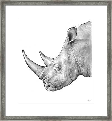 Rhino Framed Print by Greg Joens