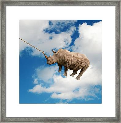 Rhinoceros Framed Print by George Mdivanian