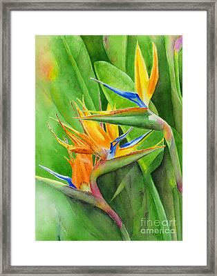 Rhonica's Garden Framed Print by Karen Fleschler