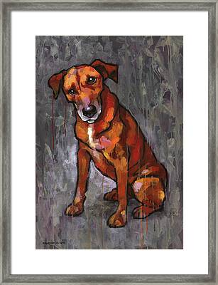 Riley Framed Print by Douglas Simonson