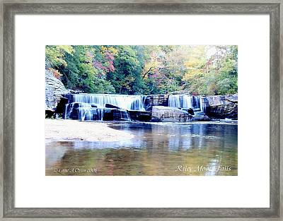 Riley Moore Falls Oconee County Sc Framed Print by Lane Owen