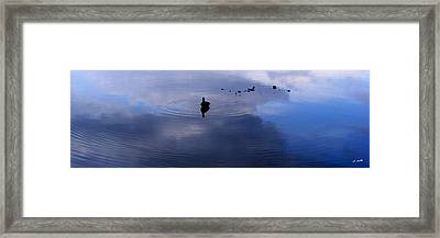 Ripples Framed Print by Ed Smith