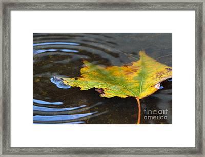 Rippling Framed Print by Dan Holm