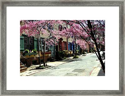 Rittenhouse Square Neighborhood Framed Print by Andrew Dinh