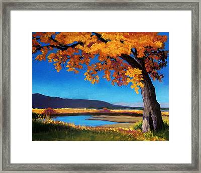 River Cottonwood Framed Print by Candy Mayer