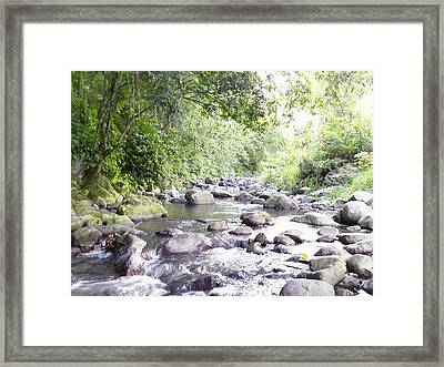 River In Adjuntas Framed Print by Walter Rivera Santos