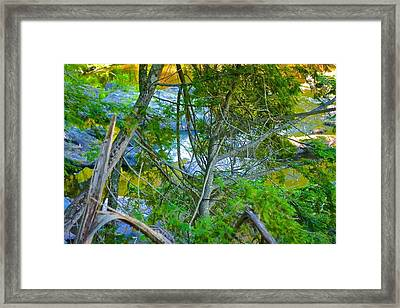 River Through Splintered Trees Framed Print by Kendall Tabor
