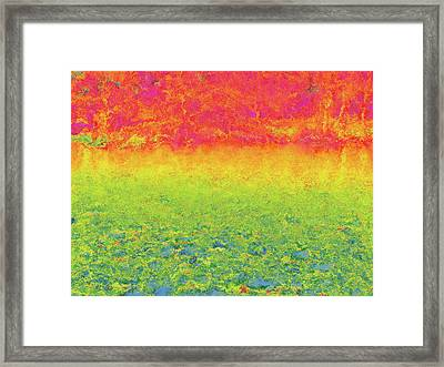 Riversong Framed Print by Wendy J St Christopher