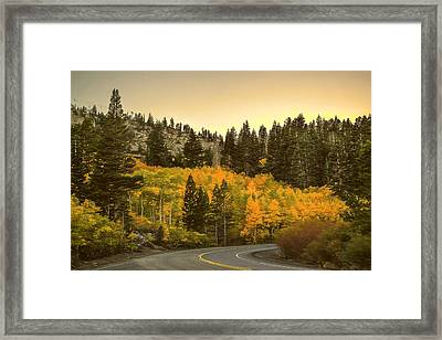 Road In Autum Framed Print by Maria Coulson