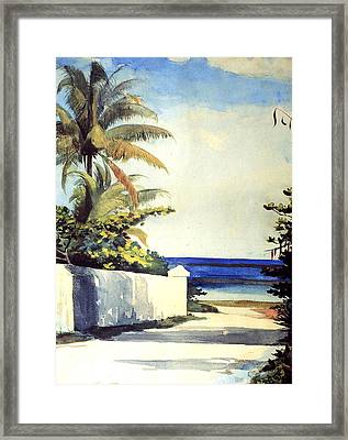 Road In Nassau Framed Print by Winslow Homer