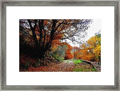 Road Through An Autumn Forest H B Framed Print by Gert J Rheeders