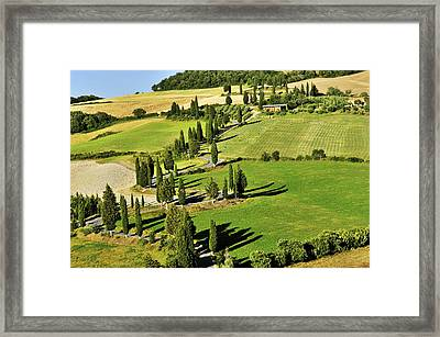 Road With Cypresses Framed Print by Juergen Feuerer