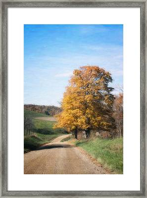 Roadside Tree In Autumn Framed Print by Tom Mc Nemar