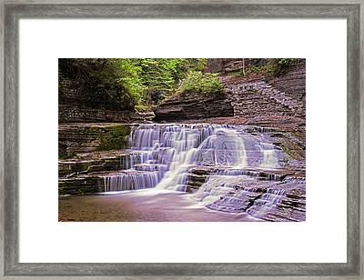 Robert H. Treman State Park Pathways Ithaca Ny Framed Print by Toby McGuire