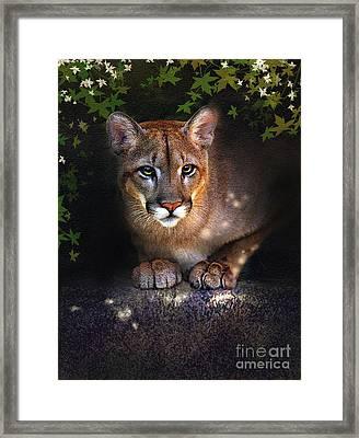 Rock Lion Framed Print by Robert Foster