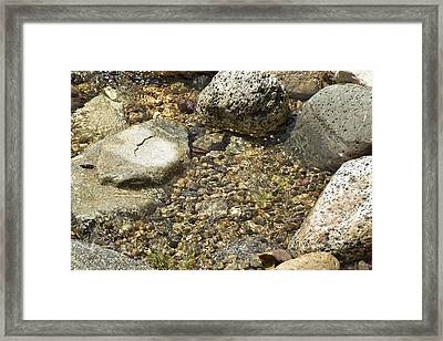 Rock Pool I Framed Print by Linda Brody