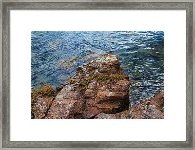 Rock With Face And Lichen Framed Print by Bonnie Follett