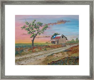 Texas Rockin Wildflowers Framed Print by Michael Dillon