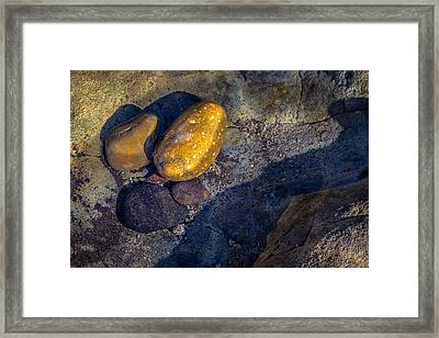 Rocks In Tidepool Framed Print by Randy Bayne