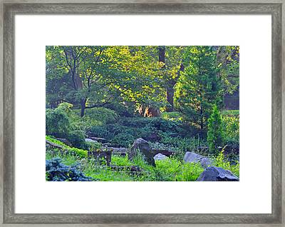 Rocky Morning Framed Print by Peter  McIntosh