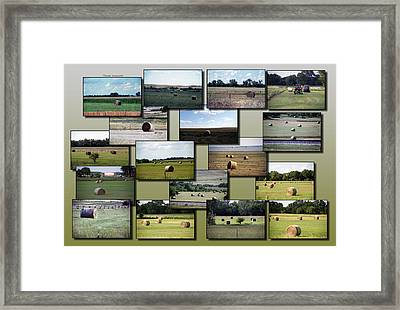 Rocky Mountain Hay Rolls Singles Collage Framed Print by Thomas Woolworth