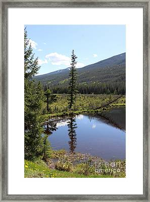 Rocky Mountain Np Beaver Ponds Framed Print by Christiane Schulze Art And Photography