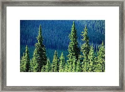 Rocky Mountain Skyline Framed Print by Todd Klassy