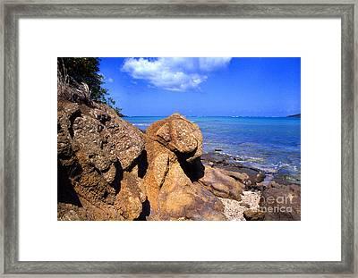Rocky Shoreline Framed Print by Thomas R Fletcher