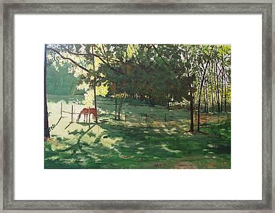 Rojo Framed Print by Sharon  De Vore
