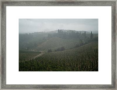 Rolling Hills Of Vineyards In Tuscany Framed Print by Todd Gipstein