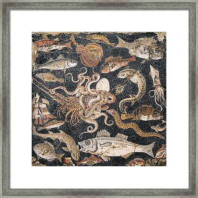 Roman Seafood Mosaic Framed Print by Sheila Terry