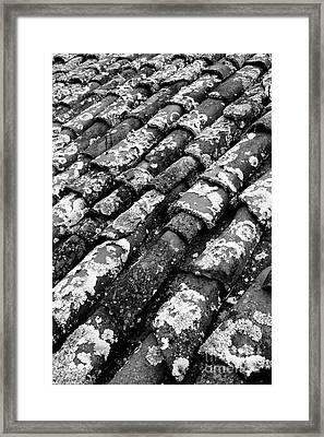 Roof Tiles Framed Print by Gaspar Avila