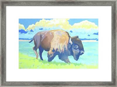 Roosevelt Bull  Framed Print by Stephen Wysocki