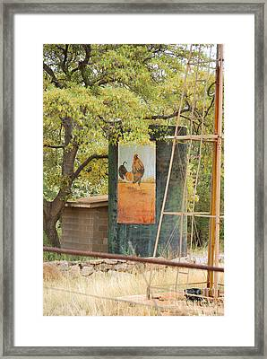 Rooster Water Tank Framed Print by Donna Greene