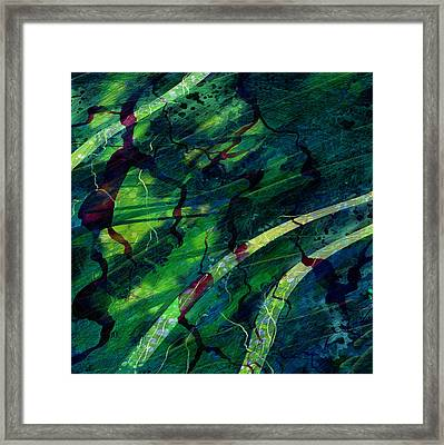 Root Canal Framed Print by Rachel Christine Nowicki