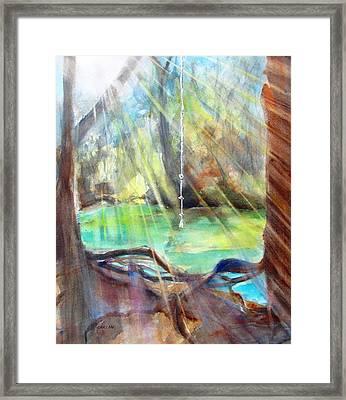 Rope Swing Framed Print by Carlin Blahnik