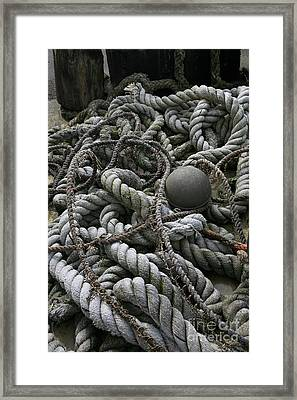 Ropes And Lines Framed Print by Timothy Johnson