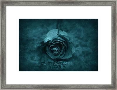 Rose - Green Framed Print by Angie Tirado