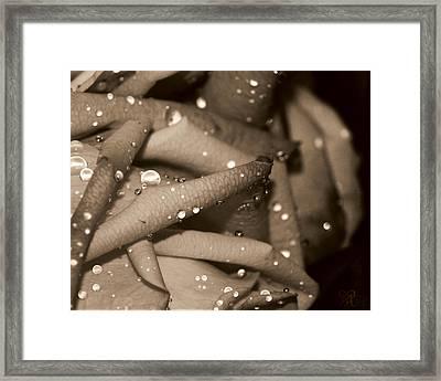 Rose And Water June Framed Print by Karen Musick